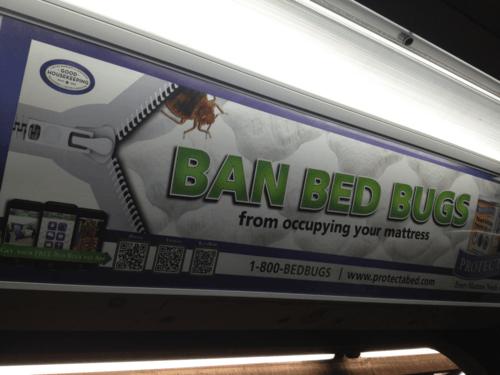 QR-code bed bugs
